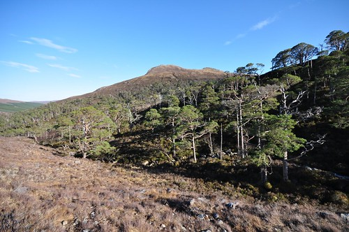 Meall an Leathaid Mhòir above the Coulin Forest