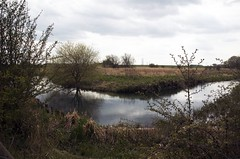 river near Driffield