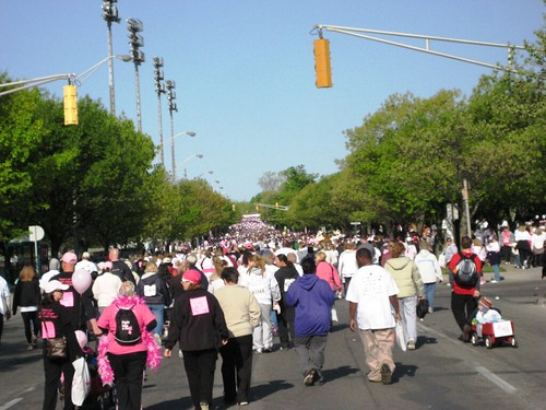 Race for the Cure (76) (by Ateupamateur)