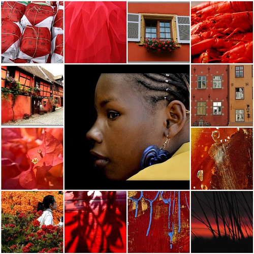 Beauty in Orange and red ...All images are from my Flickr friends .