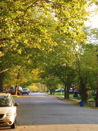 neighborhood streets.