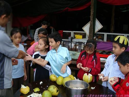katharine娃娃 拍攝的 38品柚子。