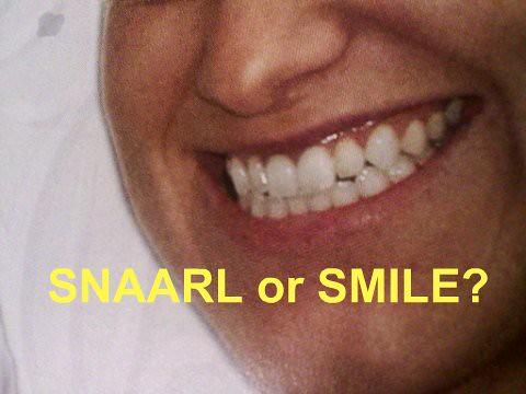Snarl/Smile2
