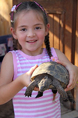 Dea with a turtle
