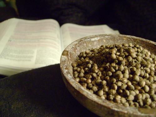 Life and seeds