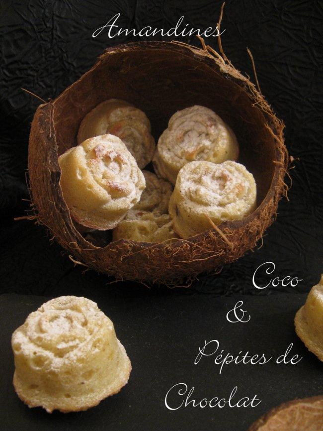 Amandines Coco & Pépites de Chocolat_5