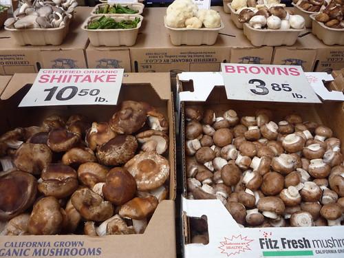 Shitake & brown mushroom