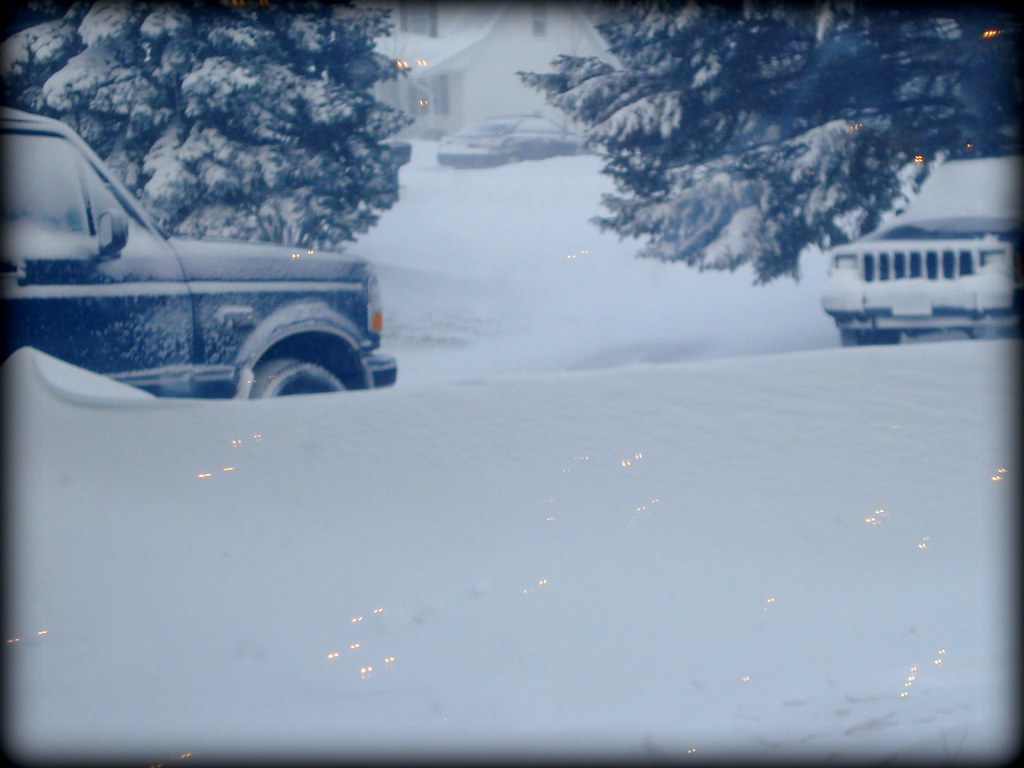 snowstorm - driveway