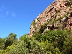 Sous la paroi de la pointe 761 m, l'arbre mort est un bon repère pour continuer