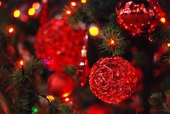 shiny red ornaments (micamica) Tags: christmas winter light red white tokyo decoration illumination 2009 akasaka