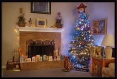 stuckincustoms HDR tutorial - Test Three (Kenneth C. Paige) Tags: christmas longexposure holiday tree festive lights nikond70 ambientlight tripod indoor gifts presents hdr tutorial aperturepriority viriginia stuckincustoms treyratcliff