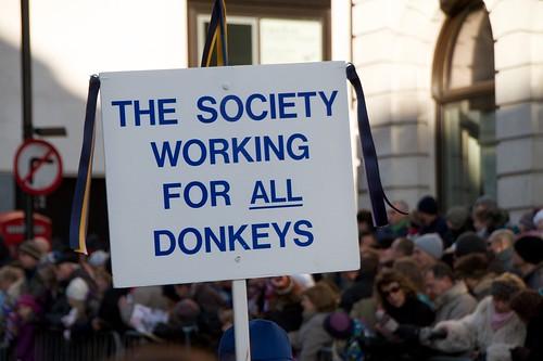 Donkey Society...what else.