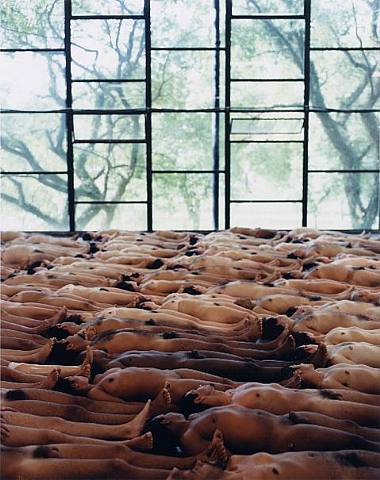 Spencer-Tunick-nudes-16