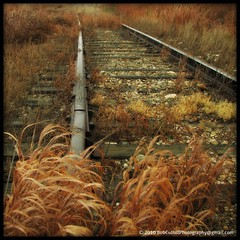 ...where the present meets the past. (westrock-bob) Tags: county old railroad autumn plants canada history fall overgrown grass train ties haiti iron track bob railway ab canadian where alberta present tribute past gravel meets allrightsreserved westrock canadien 2010 cuthill kneehill westrockbob bobcuthillphotographygmailcom artofimages bestcapturesaoi magiayfotografia mygearandmepremium mygearandmebronze mygearandmesilver mygearandmegold mygearandmeplatinum mygearandmediamond