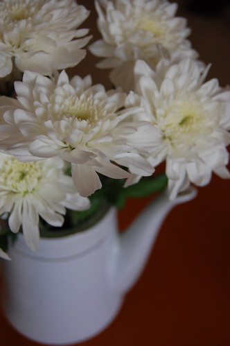 Flowers in coffee pot