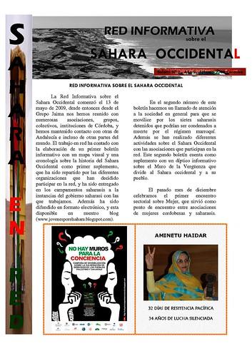 Boletín Riso Nº1 Febrero 2010 01