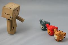 Danbo's Puppy School (Sakura.Designs) Tags: cactus mini pup tokidoki danbo revoltech danboard