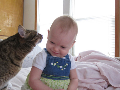 Kitty giving Lily kisses