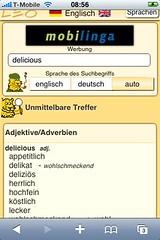 LEO dictionary (1/2)