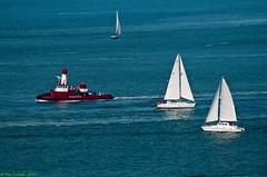 San Francisco Bay (Roy Prasad) Tags: ocean sanfrancisco california travel vacation usa water sailboat boat spring nikon sailing pacificocean goldengatebridge goldengate sanfranciscobay d300 d700 royprasad