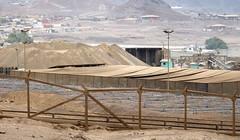 028-dia05-taltal2 (Spiniflores) Tags: antofagasta mineria taltal
