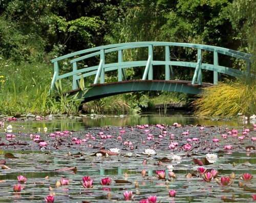 Monet Bridge and Water Lillies