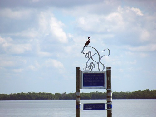 IMG_5783-Estero-Bay-Friendship-Sentry