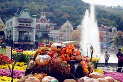 Flump_279 (nahtahlee) Tags: park travel halloween fountain animals zoo amusement korea parade traveling studyabroad everland