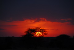 African sunset (vesselinak) Tags: africa sunset kenya africansunset msh02101 msh0210