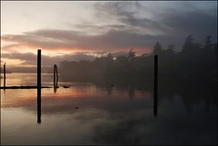 (Ray L G) Tags: ocean trees sunset canada west water fog clouds reflections bc britishcolumbia victoria vancouverisland pacificocean macaulaypointpark natureselegantshots