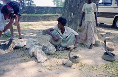 930000 032a People  are Strange (rona.h) Tags: january 1993 srilanka cacique snakecharmer ronah