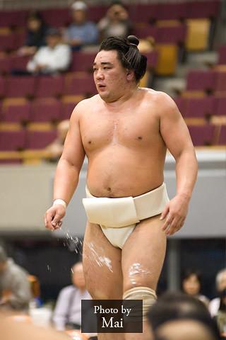 日馬富士 画像49
