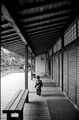Late for tea (shetha) Tags: bw gabriel monochrome oregon canon bench portland eos teahouse japanesegardens cpl canonef1755mmf28is 40d