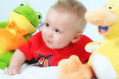 Davi (Fabiana Velso) Tags: cores ensaio criana menino bichinhos pelcia fabianavelso