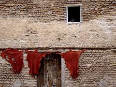 Brandelli rossi (bttvirginia) Tags: marocco medina fes