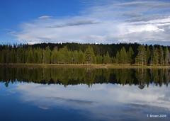 DSC_0588 (joseph.brown30) Tags: reflections lakes wyoming yellowstonepark