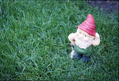 Gnome (pornflakez) Tags: red green grass hat gnome amelie troll