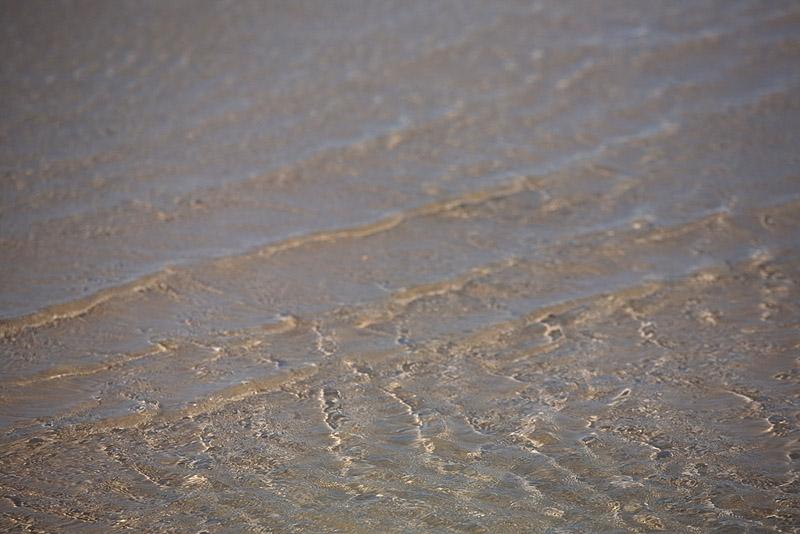 The Ocean, 169/365