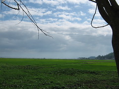 RICEFIELD (PINOY PHOTOGRAPHER) Tags: wonderful philippines picture filipino rizal pilipinas morong