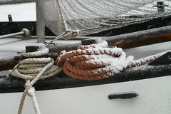 PICT0052 (guymonique) Tags: sneeuw marken 2010