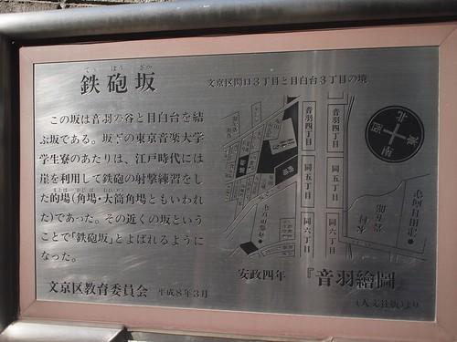 20100221t39