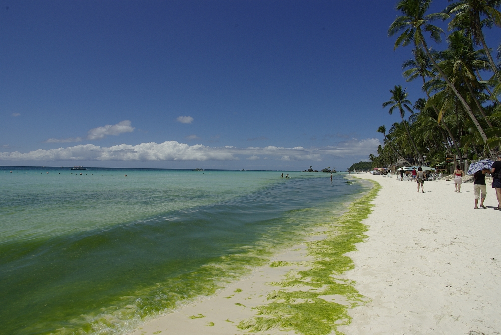 +++五星級島嶼....長灘島[Boracay]++