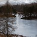 Tarn Hows frozen over