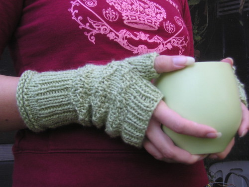 Princess in the Wilds fingerless gloves