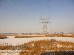 2010 vanuit de trein (Dita.v.s) Tags: zaanstreek januari2010