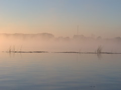 brume sur la saone- mist saone (doudyves) Tags: morning sky mist france fog river photography photo nikon eau riviere sable pecheur acqua brouillard peche brume aurore matinal saone rives leverdujour lyonnais colorphotoaward