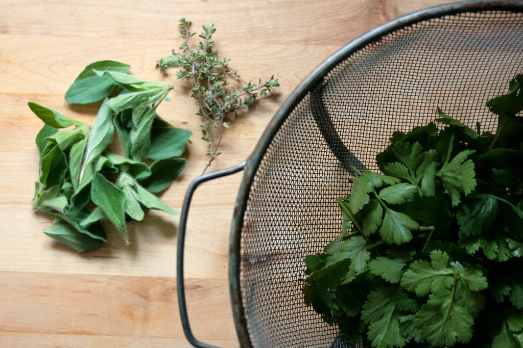 cilantro, oregano and thyme