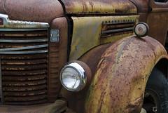 International (hutchphotography2020) Tags: truck nikon rust grill international fender chrome hood headlight headlamp corrosion