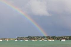 Stroke of luck (Daniel Vicario) Tags: omokoroa bayofplenty newzealand nz