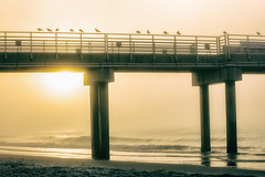 Alabama Foggy Morning 3 (johnmcgrawphotography) Tags: beach beachsunrise fioggy foggymorning gulfofmexico johnmcgraw johnmcgrawphotography morning morningphotography morningpier ocean orangebeach photography pier sunrise sunriseatbeach travel travelphotography